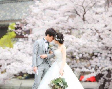 4月に入りました♩春爛漫♡桜ロケ